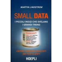 SMALL DATA - HOEPLI